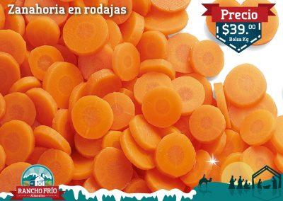 Zanahoria en Rodajas